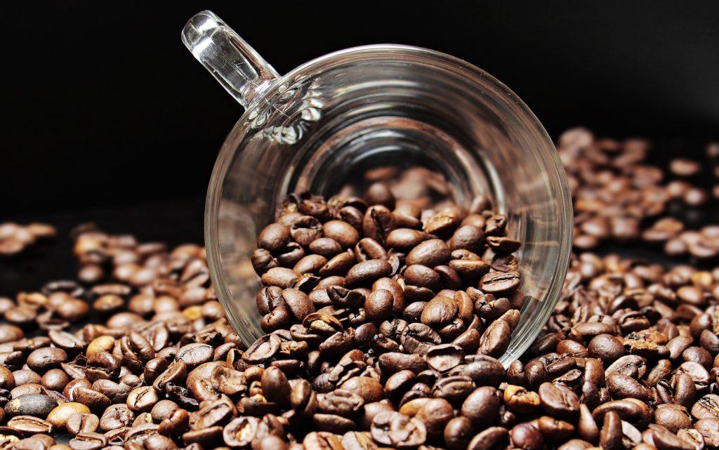 coffee expo
