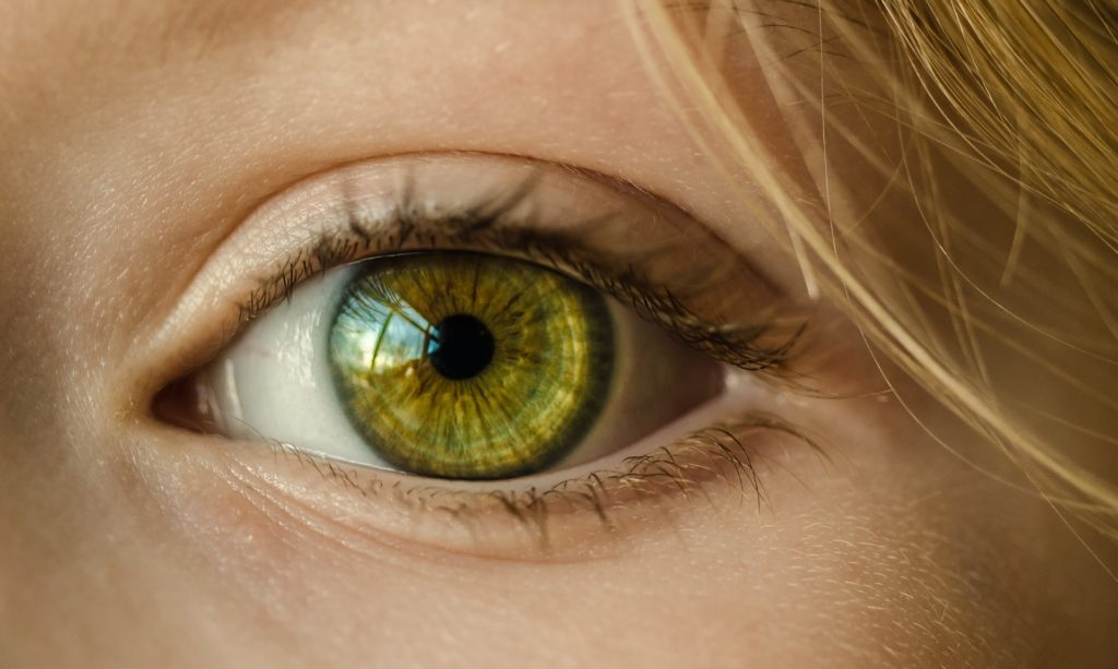 eyecare trade show