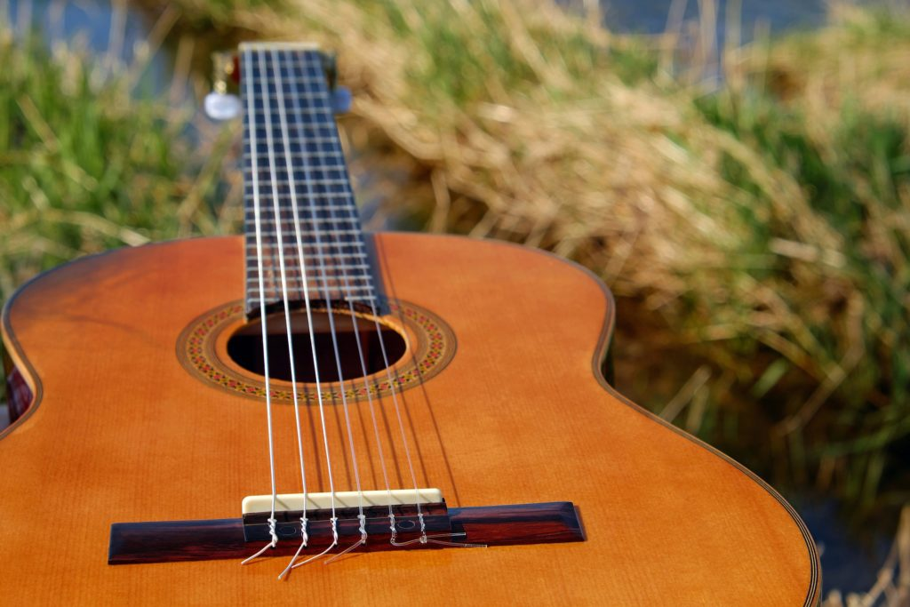 guitar in field